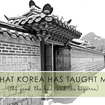 Korea has Taught Me…
