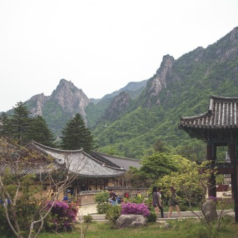Pros and Cons of Living in Korea