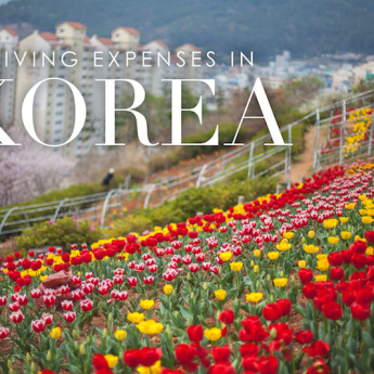 Living Expenses in Korea