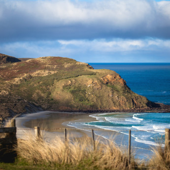 Sandfly Bay, Otago Peninsula